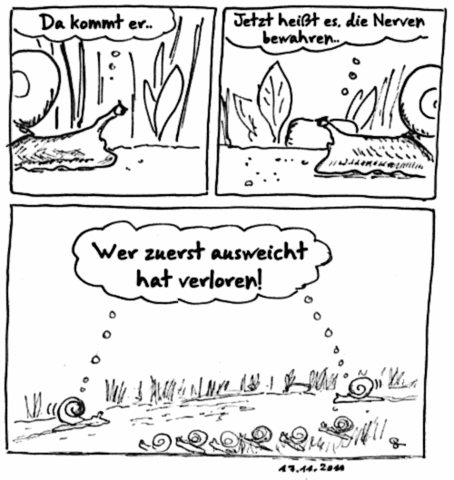 2011-11-17_Schnecken-Rennen