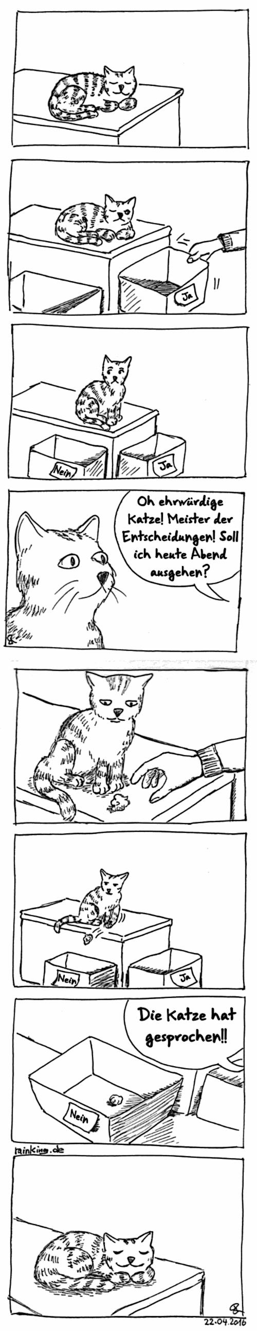 2016-04-22_EntscheidungsKatze_DE