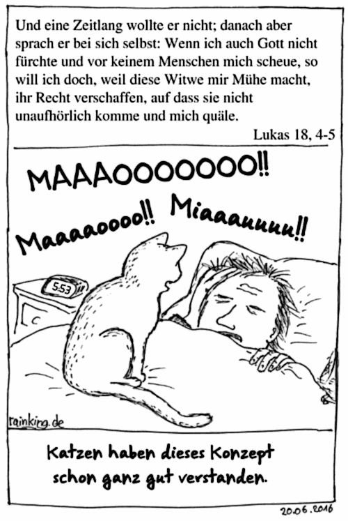2016-06-20_1_Katze-Lukas-Witwe_DE